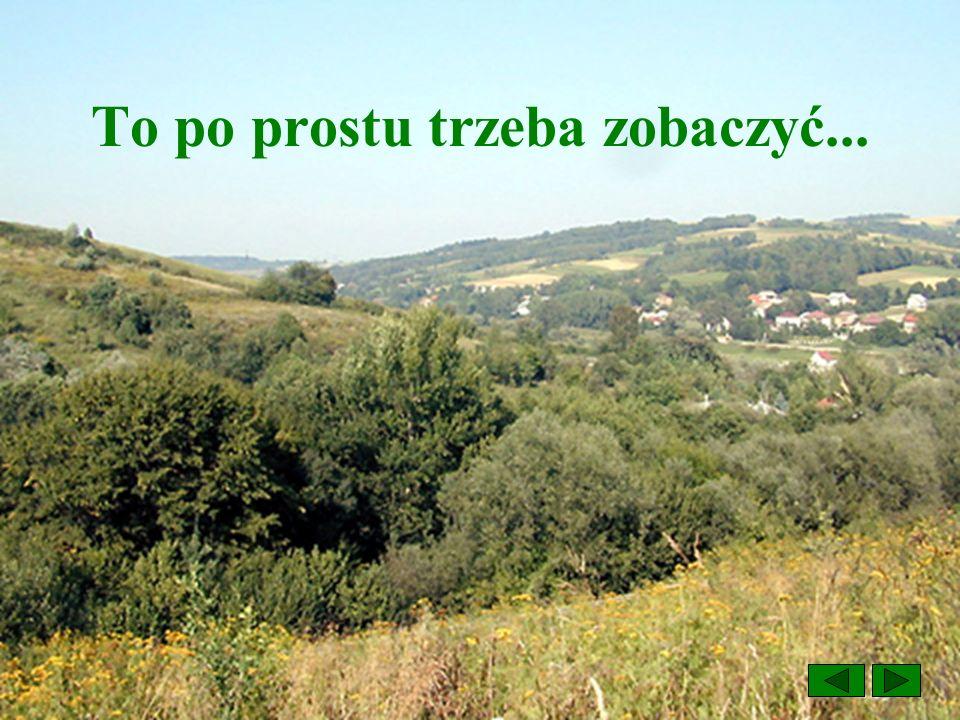 Na wakacje tylko w okolice Przemyśla