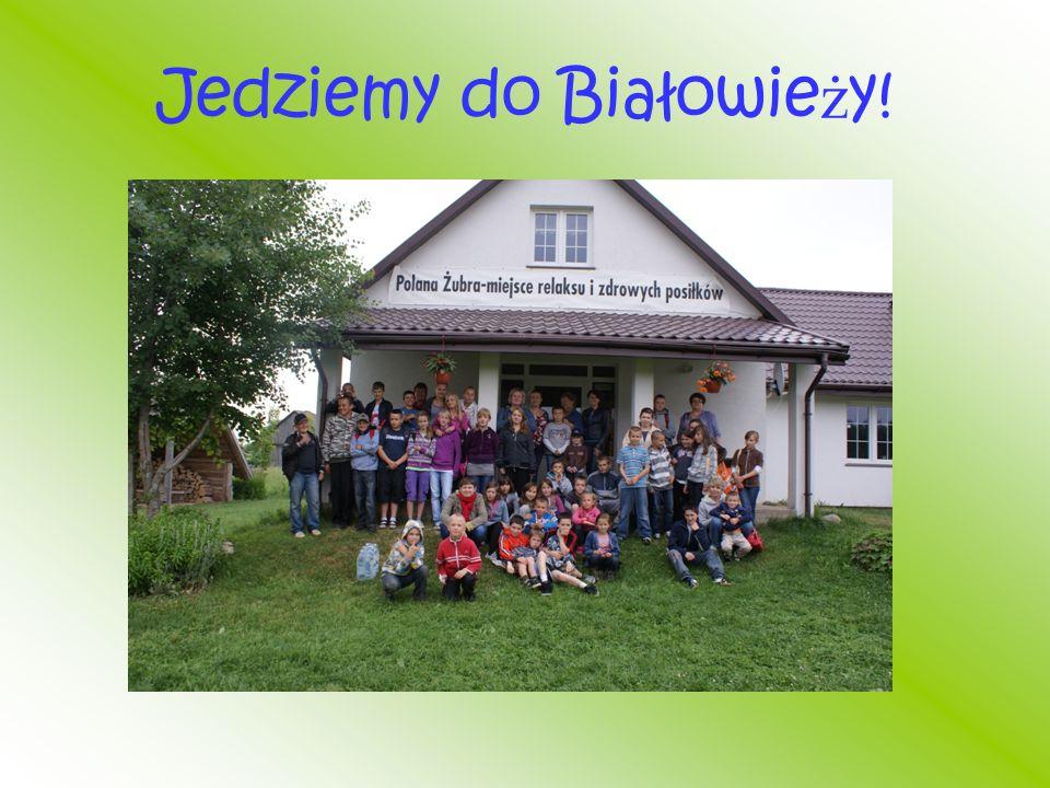 Jedziemy do Białowie ż y!