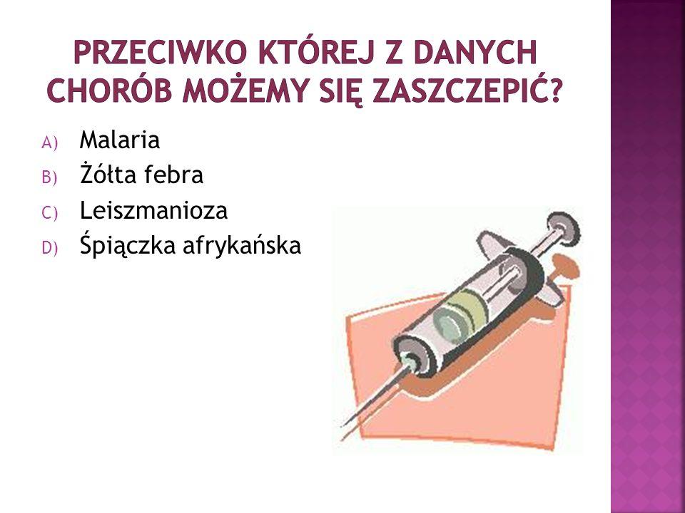 A) Malaria B) Żółta febra C) Leiszmanioza D) Śpiączka afrykańska
