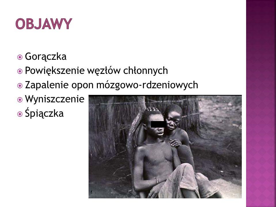 Jaka choroba bardzo powszechna na terenach tropikalnych i subtropikalnych występowała kiedyś endemicznie w Polsce?