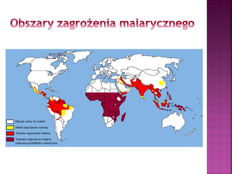 Przyczyna: wirusa należącego do grupy tzw. Flavivirusów Wektor: komary