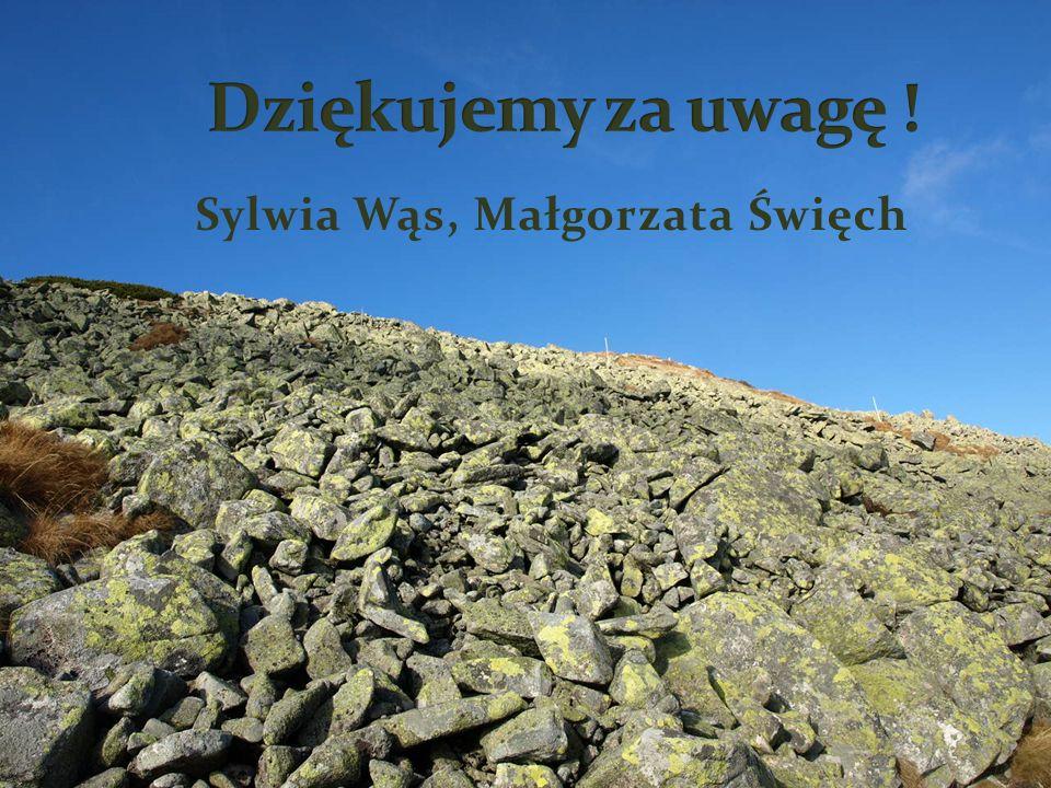 Sylwia Wąs, Małgorzata Święch