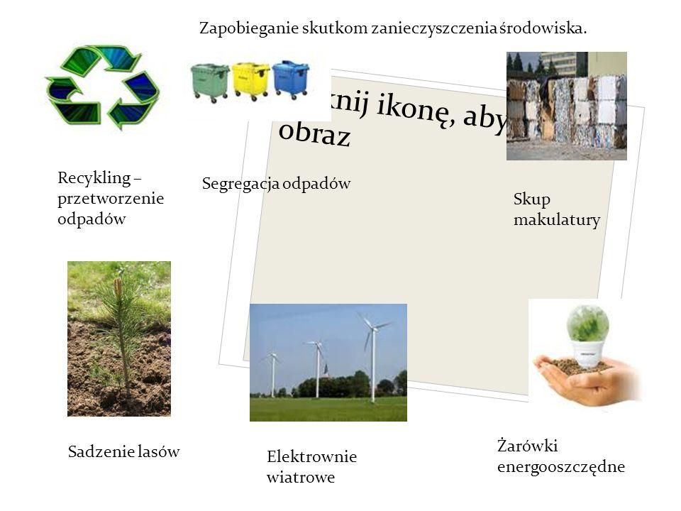 Kliknij ikonę, aby dodać obraz Recykling – przetworzenie odpadów Segregacja odpadów Sadzenie lasów Elektrownie wiatrowe Skup makulatury Żarówki energooszczędne Zapobieganie skutkom zanieczyszczenia środowiska.