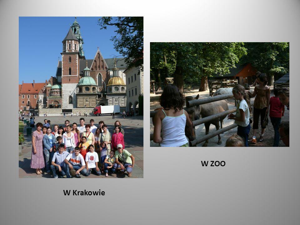 W Krakowie W ZOO