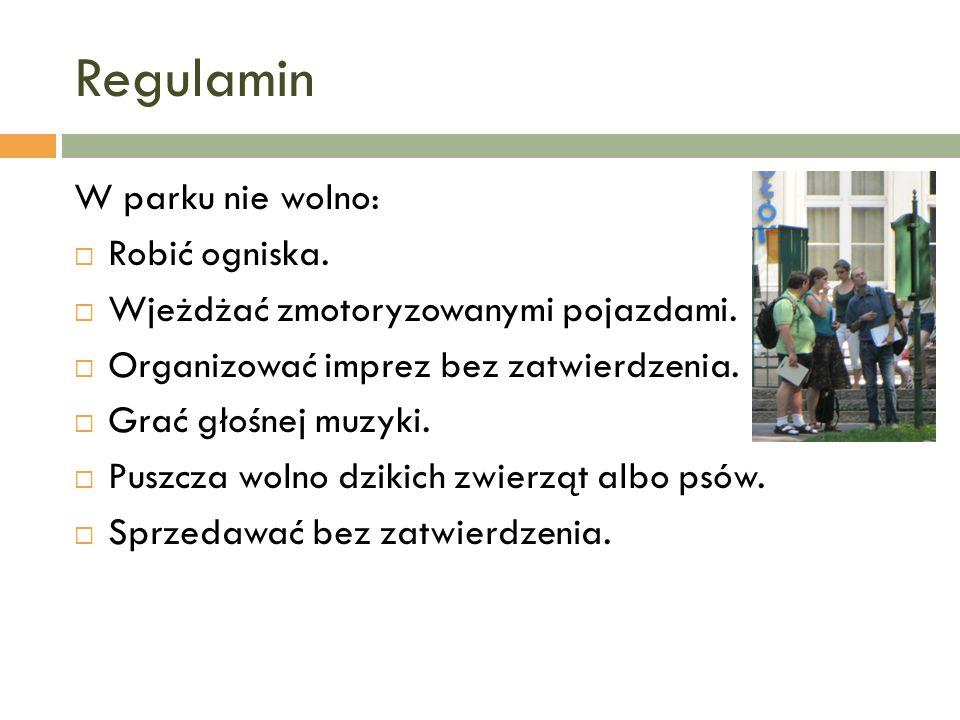 Wakacje w mieście W Krakowie można zwiedzać muzea albo pójść na basen.