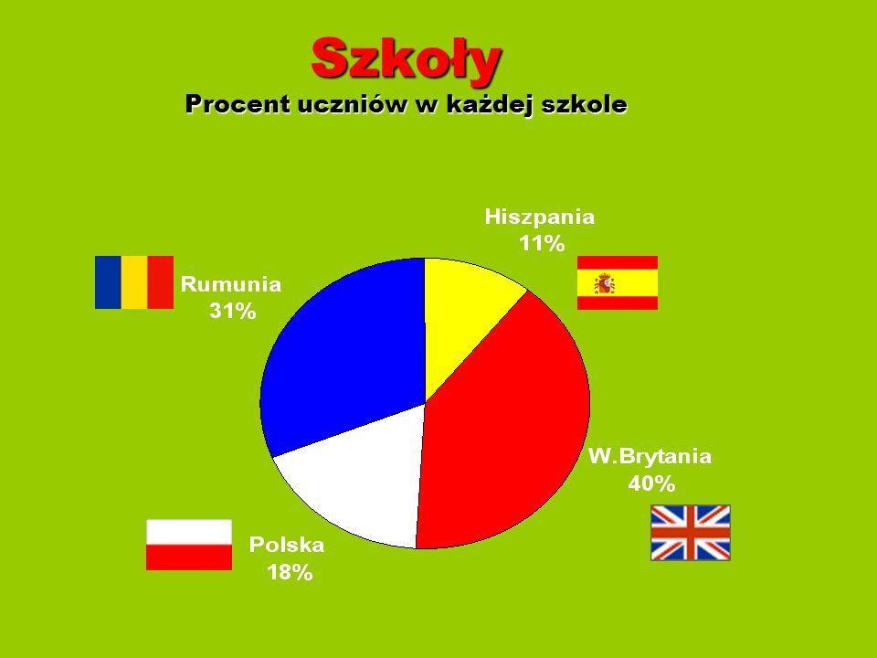 Ankieta Została stworzona ankieta dotycząca zainteresowań młodzieży.