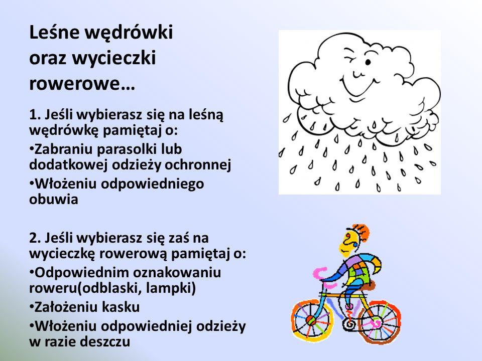 Leśne wędrówki oraz wycieczki rowerowe… 1. Jeśli wybierasz się na leśną wędrówkę pamiętaj o: Zabraniu parasolki lub dodatkowej odzieży ochronnej Włoże