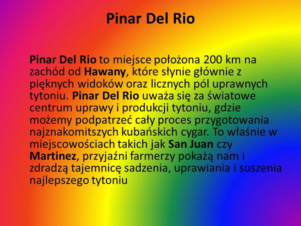 Pinar Del Rio Pinar Del Rio to miejsce położona 200 km na zachód od Hawany, które słynie głównie z pięknych widoków oraz licznych pól uprawnych tytoni