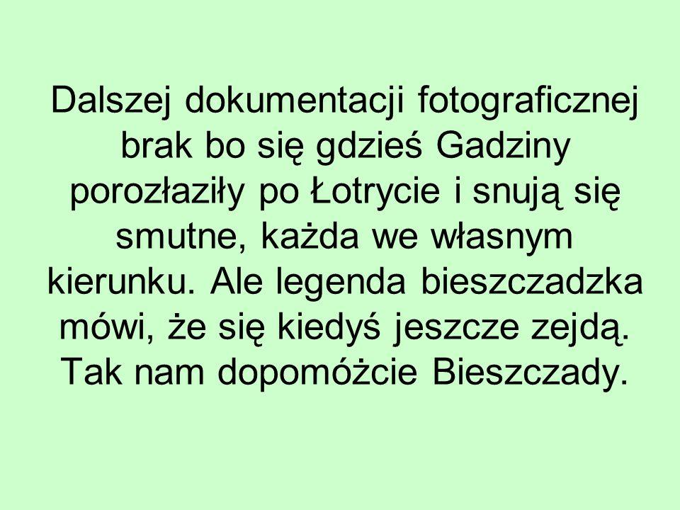 Dalszej dokumentacji fotograficznej brak bo się gdzieś Gadziny porozłaziły po Łotrycie i snują się smutne, każda we własnym kierunku.