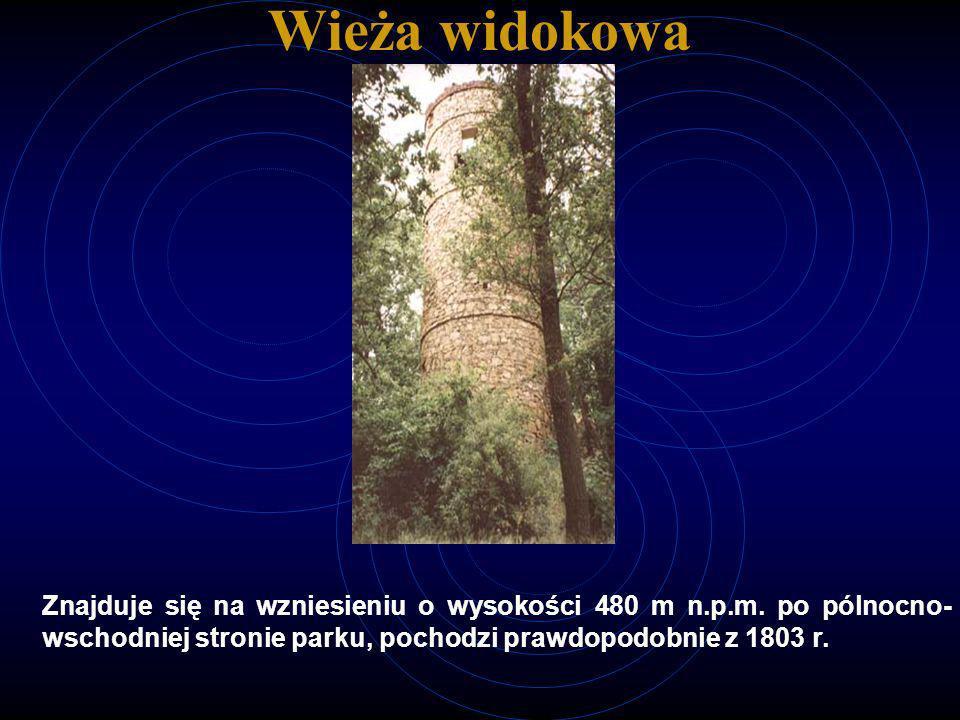 Wieża widokowa Znajduje się na wzniesieniu o wysokości 480 m n.p.m. po pólnocno- wschodniej stronie parku, pochodzi prawdopodobnie z 1803 r.
