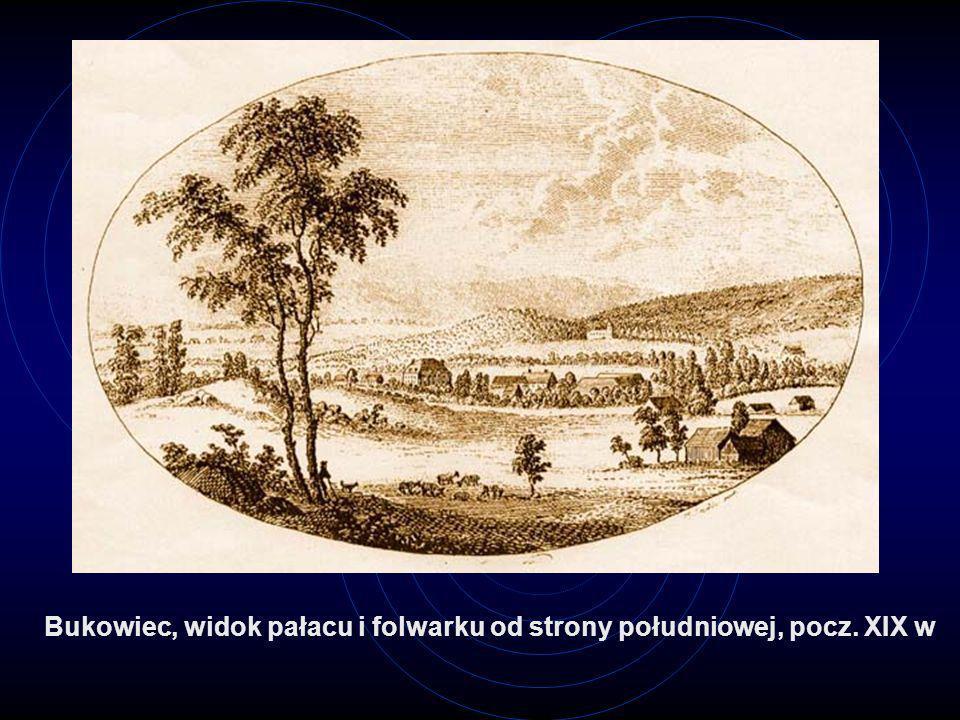 Bukowiec, widok pałacu i folwarku od strony południowej, pocz. XIX w
