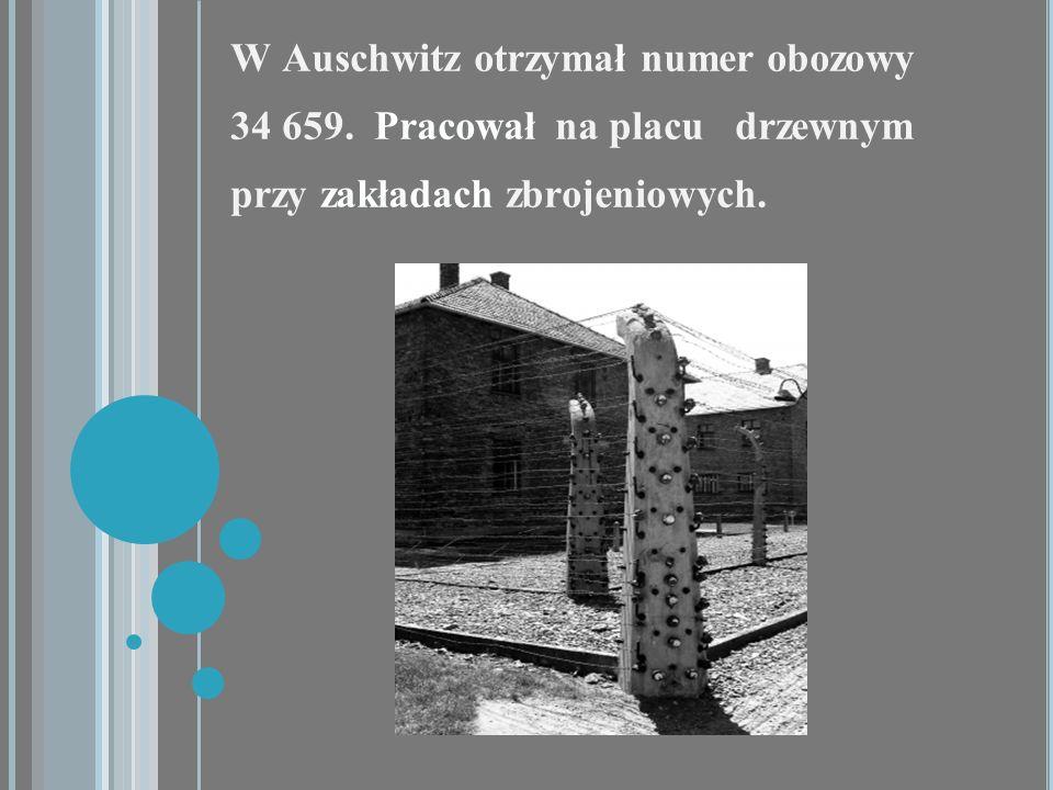 W Auschwitz otrzymał numer obozowy 34 659. Pracował na placu drzewnym przy zakładach zbrojeniowych.