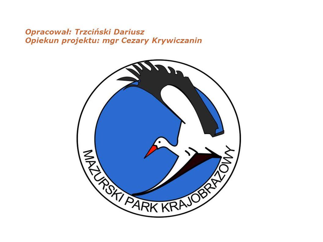 Opracował: Trzciński Dariusz Opiekun projektu: mgr Cezary Krywiczanin