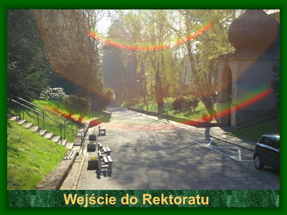 Wejście do Rektoratu