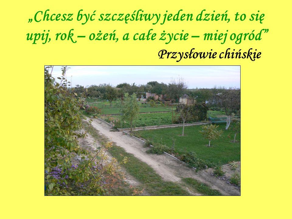 Chcesz być szczęśliwy jeden dzień, to się upij, rok – ożeń, a całe życie – miej ogród Przysłowie chińskie
