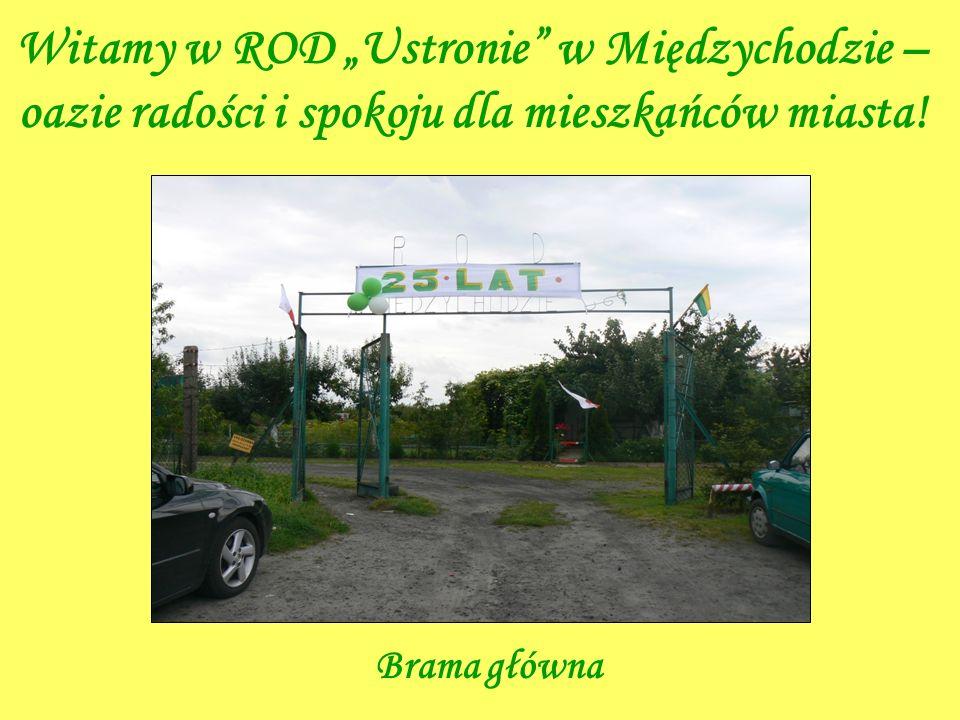 Witamy w ROD Ustronie w Międzychodzie – oazie radości i spokoju dla mieszkańców miasta! Brama główna