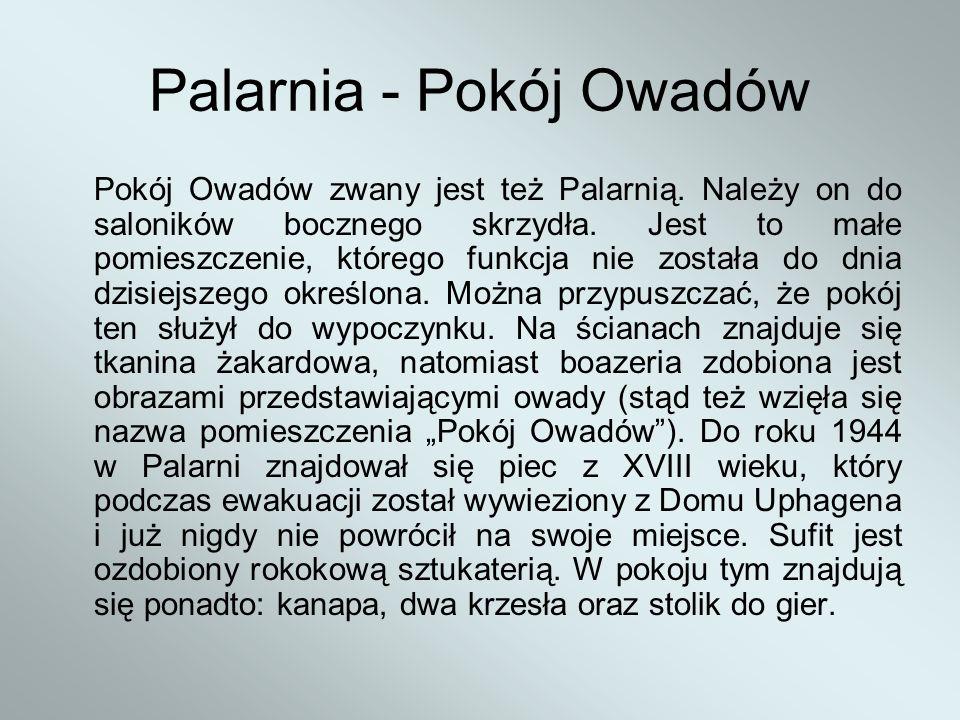 Palarnia - Pokój Owadów Pokój Owadów zwany jest też Palarnią. Należy on do saloników bocznego skrzydła. Jest to małe pomieszczenie, którego funkcja ni