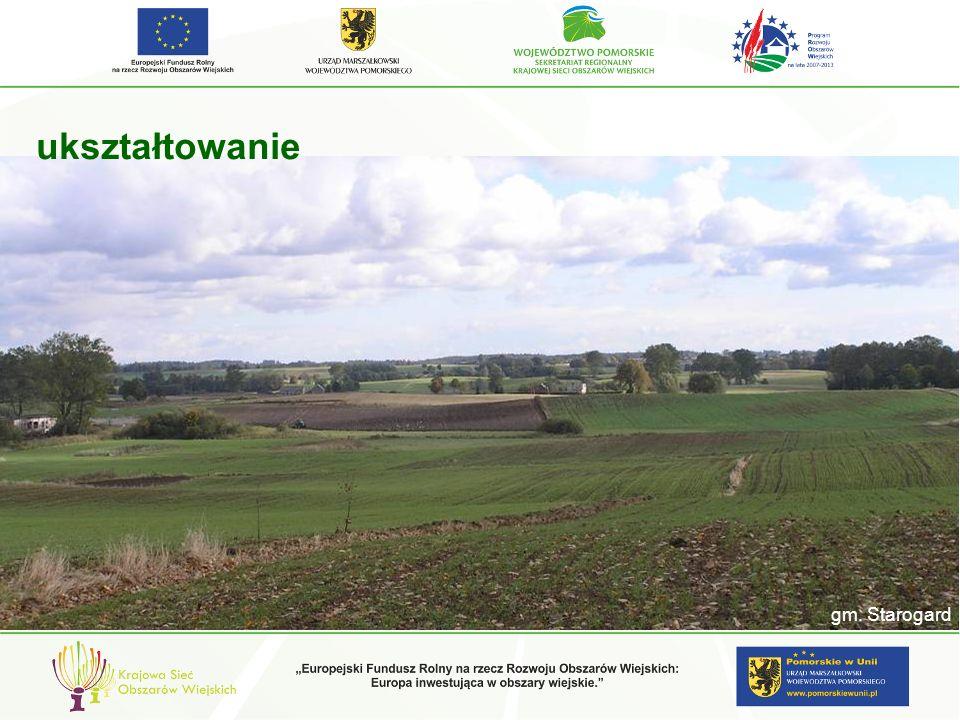 Charakterystyczne sposoby kształtowania krajobrazu regionów kulturowych i Propozycje kształtowania ZABUDOWA – ARCHITEKTURA I BUDOWNICTWO wieś Subkowy – ale czy to działa … ??.