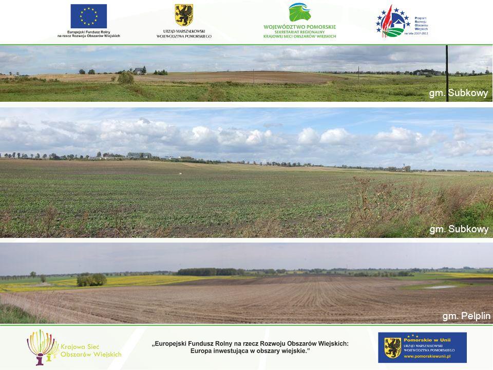 zagrożenia i dewastacje w zakresie: kompozycji i rodzaju zieleni towarzyszącej gm.
