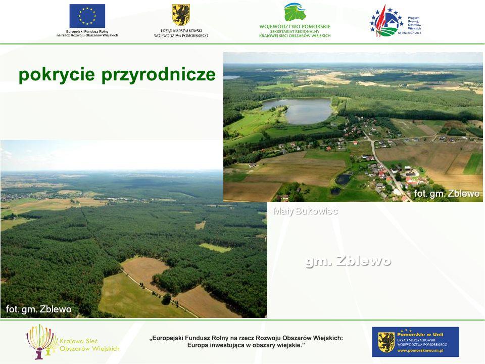 Charakterystyczne sposoby kształtowania krajobrazu regionów kulturowych i Propozycje kształtowania ELEMENTY INFRASTRUKTURY TECHNICZNEJ ze względu na specyfikę zagospodarowania przestrzennego terenów pojezierzy, tereny te są w ostatnich latach intensywnie zagospodarowywane inwestycjami o charakterze energetycznym.
