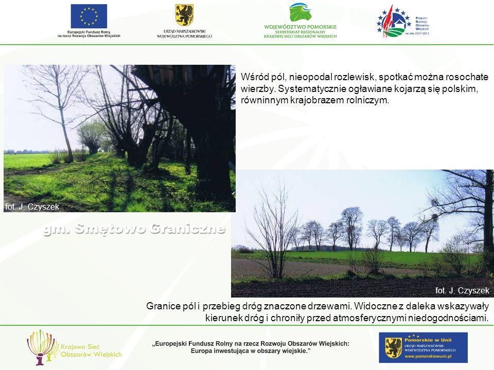 Charakterystyczne sposoby kształtowania krajobrazu regionów kulturowych i Propozycje kształtowania TERENY OTWARTE Subkowy- wieś, widok z lotu ptaka.