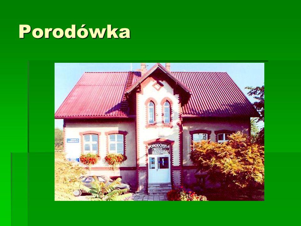 Historia domu modlitewnego W Hołdunowie zachował się ewangelicki dom modlitewny z 1778 roku, zbudowany przez kolonistów przybyłych do Hołdunowa z Kóz