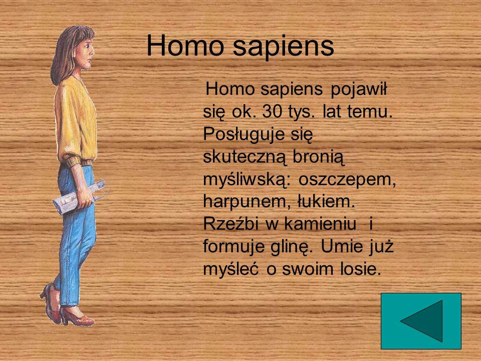 Homo sapiens Homo sapiens pojawił się ok. 30 tys. lat temu. Posługuje się skuteczną bronią myśliwską: oszczepem, harpunem, łukiem. Rzeźbi w kamieniu i