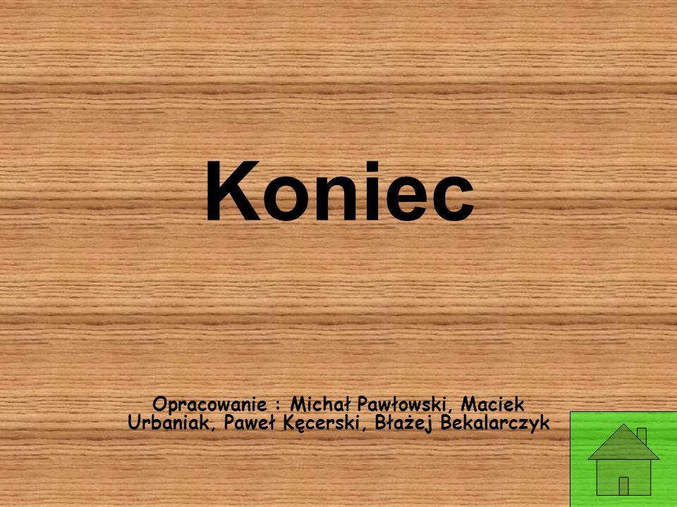 Koniec Opracowanie : Michał Pawłowski, Maciek Urbaniak, Paweł Kęcerski, Błażej Bekalarczyk