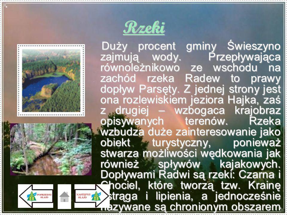 Rzeki Duży procent gminy Świeszyno zajmują wody. Przepływająca równoleżnikowo ze wschodu na zachód rzeka Radew to prawy dopływ Parsęty. Z jednej stron