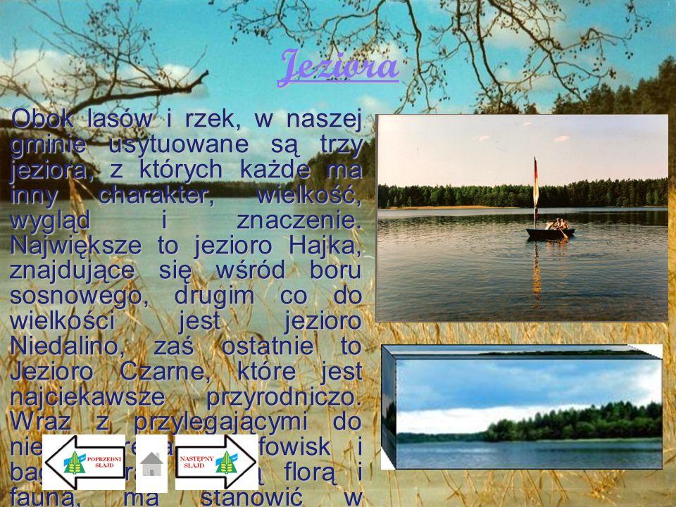 Jeziora Obok lasów i rzek, w naszej gminie usytuowane są trzy jeziora, z których każde ma inny charakter, wielkość, wygląd i znaczenie. Największe to