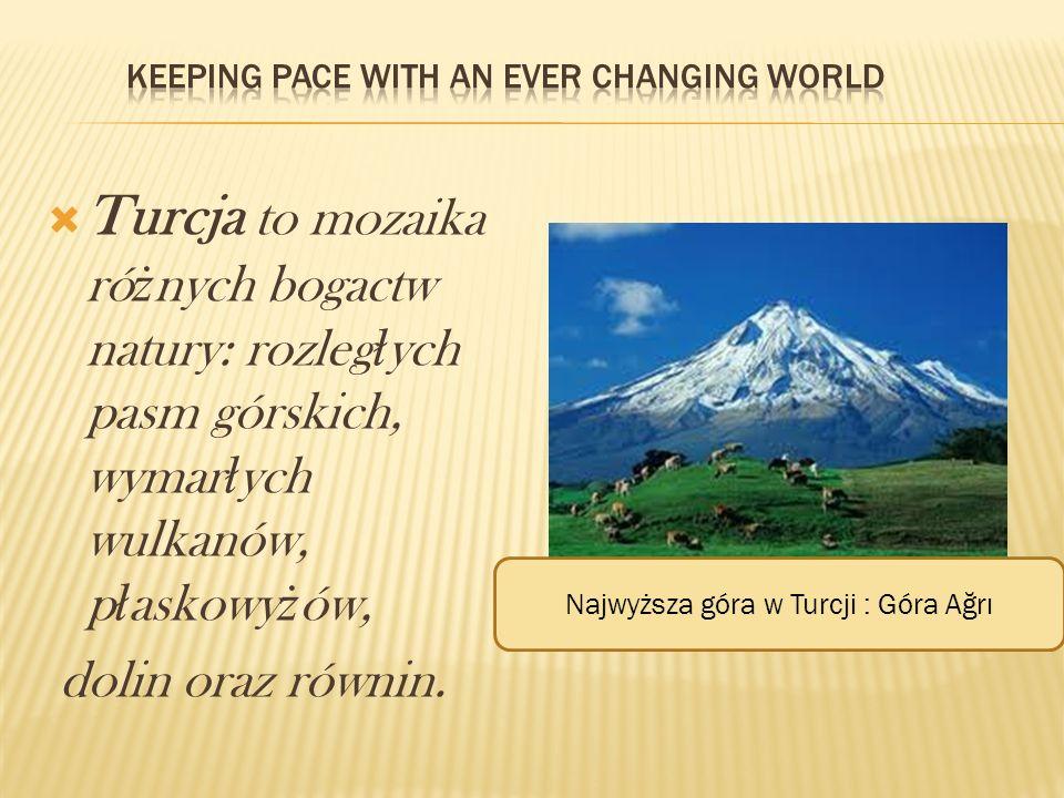 Turcja to mozaika ró ż nych bogactw natury: rozleg ł ych pasm górskich, wymar ł ych wulkanów, p ł askowy ż ów, dolin oraz równin. Najwyższa góra w Tur