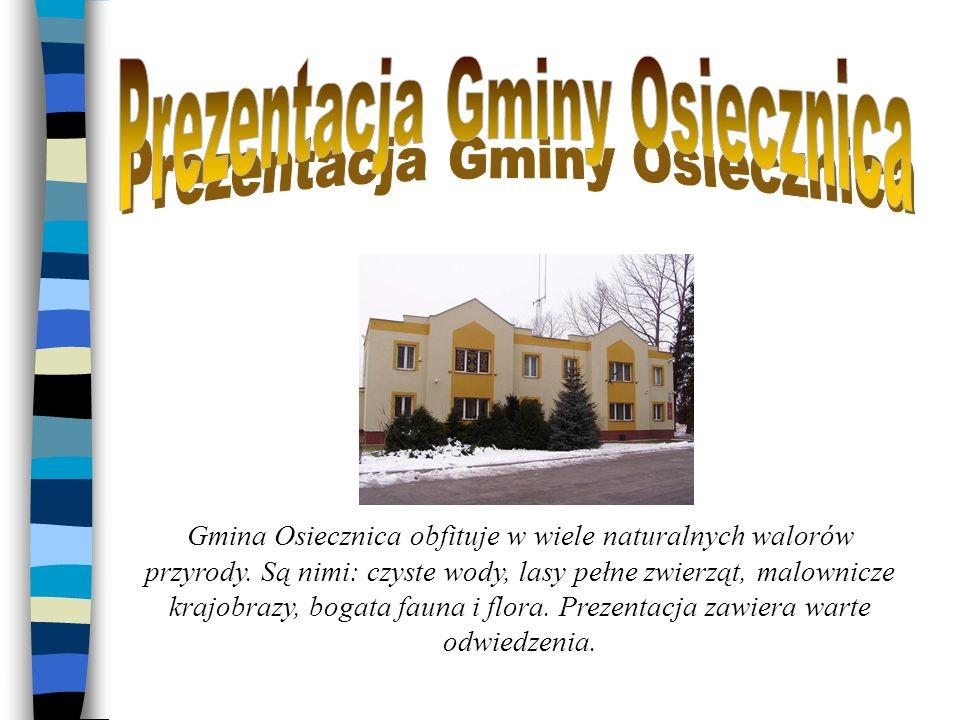 Gmina Osiecznica obfituje w wiele naturalnych walorów przyrody. Są nimi: czyste wody, lasy pełne zwierząt, malownicze krajobrazy, bogata fauna i flora