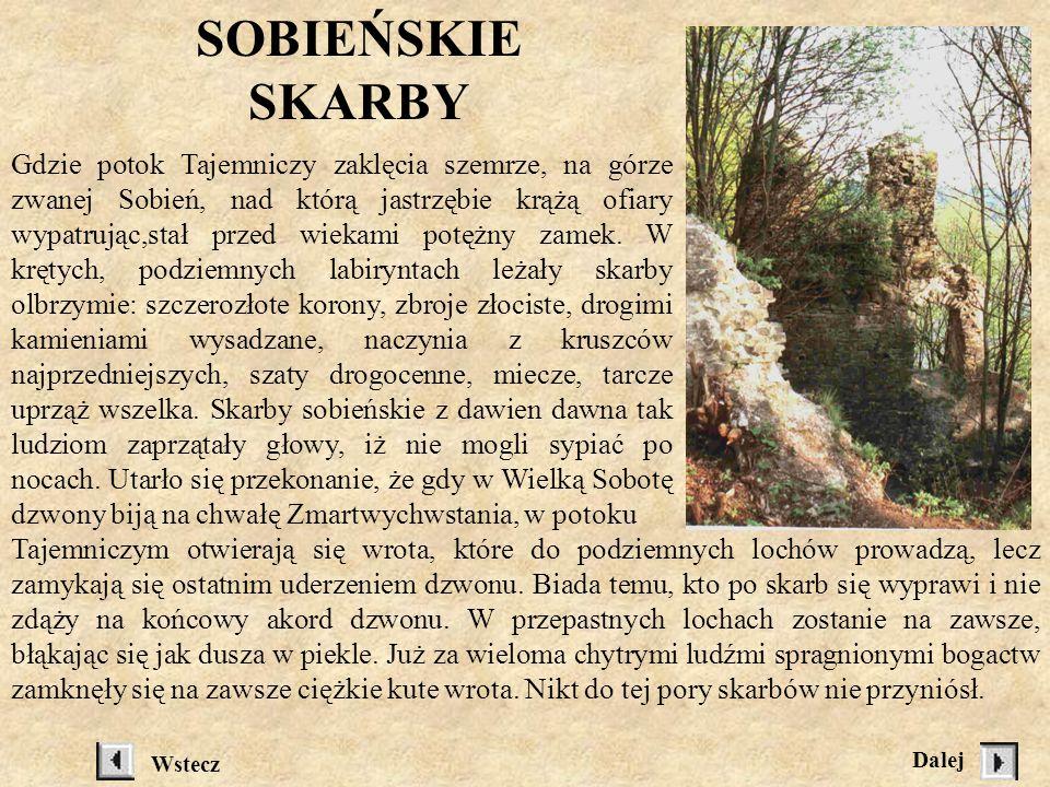 Dane z Sanok. Dzieje miasta Pod red. F. Kiryka, Kraków 1995 Mozaika... Wstecz