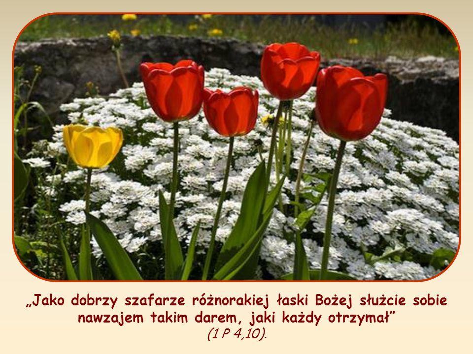 Jako dobrzy szafarze różnorakiej łaski Bożej służcie sobie nawzajem takim darem, jaki każdy otrzymał (1 P 4,10).