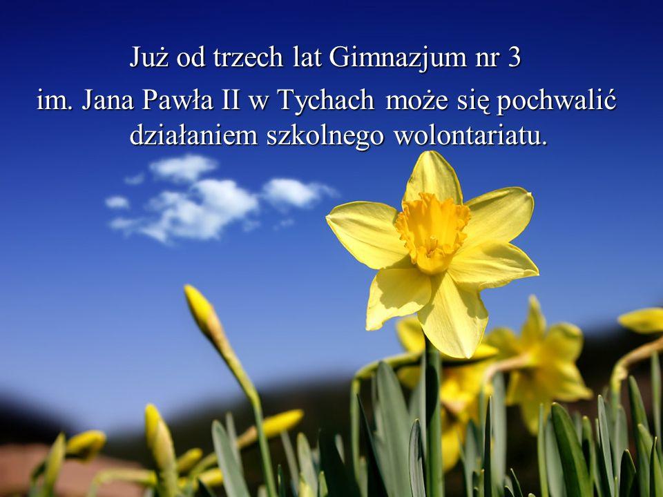 Już od trzech lat Gimnazjum nr 3 im. Jana Pawła II w Tychach może się pochwalić działaniem szkolnego wolontariatu.