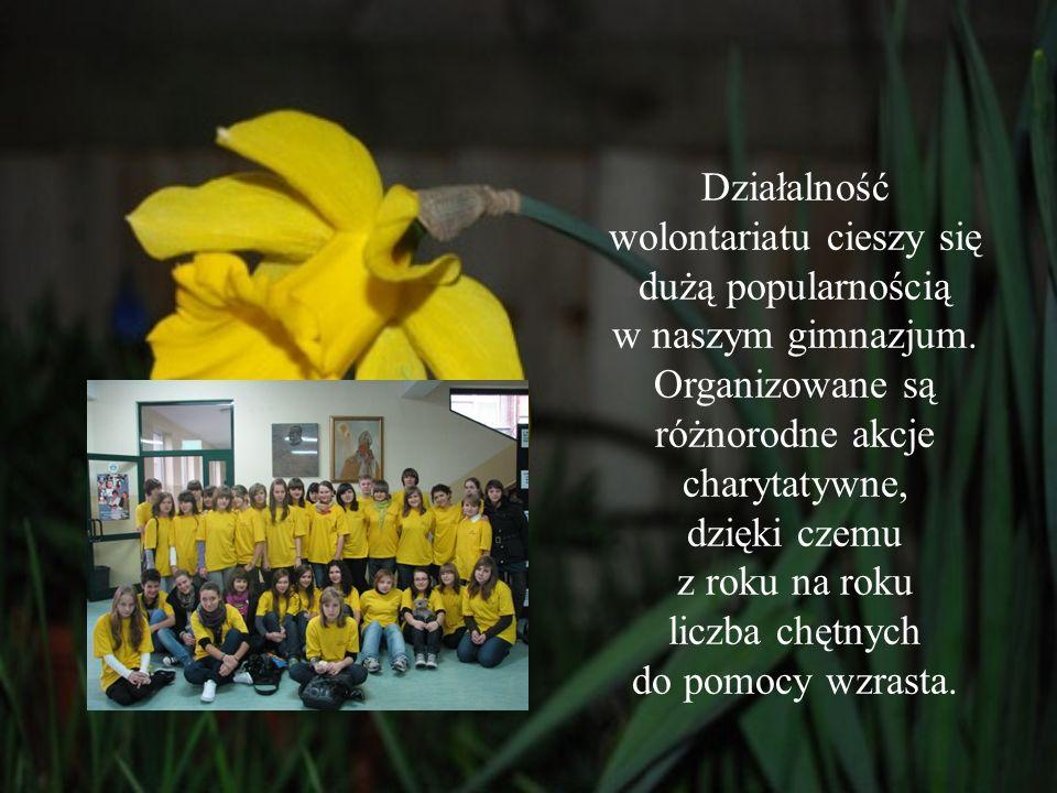 Działalność wolontariatu cieszy się dużą popularnością w naszym gimnazjum. Organizowane są różnorodne akcje charytatywne, dzięki czemu z roku na roku