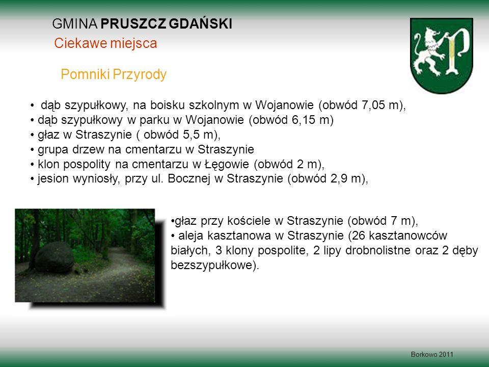 GMINA PRUSZCZ GDAŃSKI Borkowo 2011 dąb szypułkowy, na boisku szkolnym w Wojanowie (obwód 7,05 m), dąb szypułkowy w parku w Wojanowie (obwód 6,15 m) gł