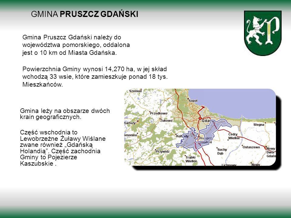 GMINA PRUSZCZ GDAŃSKI Borkowo 2011 Gmina Pruszcz Gdański należy do województwa pomorskiego, oddalona jest o 10 km od Miasta Gdańska. Gmina leży na obs
