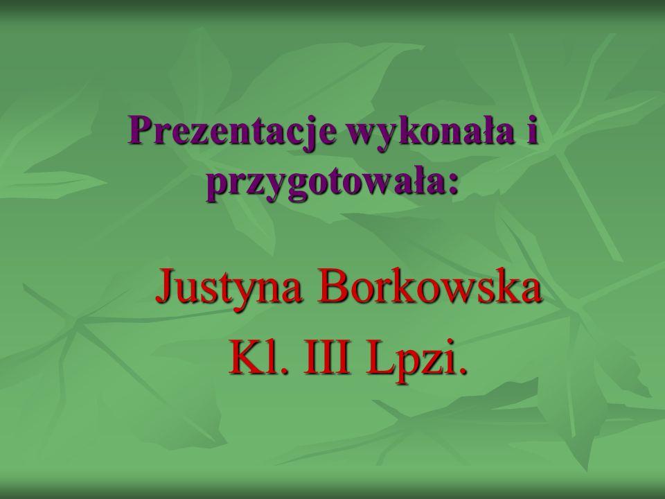 Prezentacje wykonała i przygotowała: Justyna Borkowska Kl. III Lpzi.