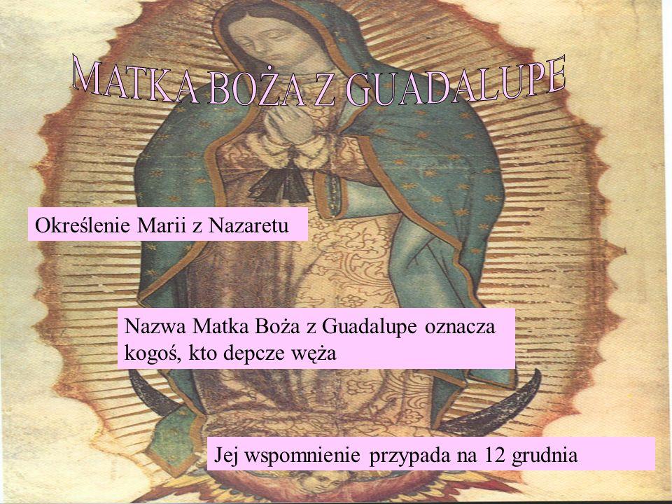 Określenie Marii z Nazaretu Nazwa Matka Boża z Guadalupe oznacza kogoś, kto depcze węża Jej wspomnienie przypada na 12 grudnia