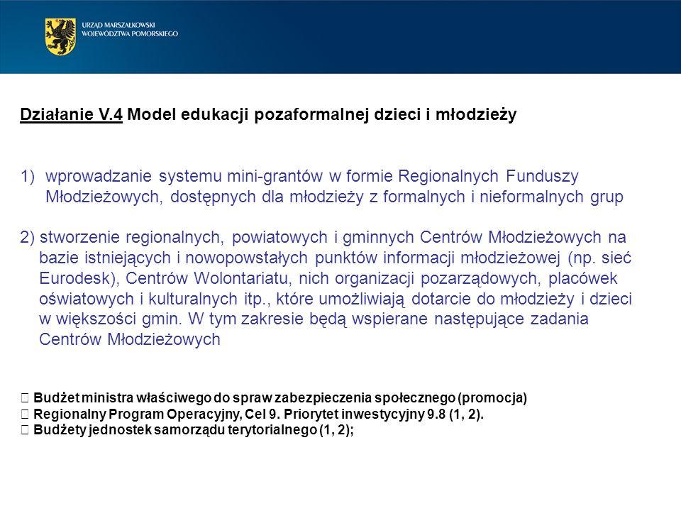 Działanie V.4 Model edukacji pozaformalnej dzieci i młodzieży 1)wprowadzanie systemu mini-grantów w formie Regionalnych Funduszy Młodzieżowych, dostęp