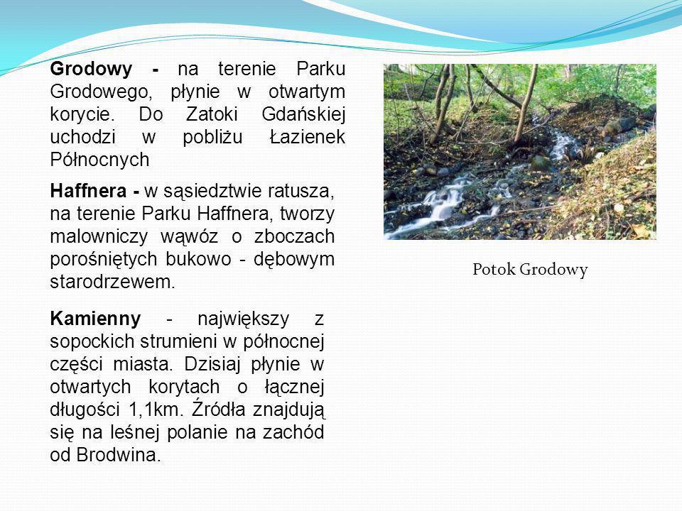 Grodowy - na terenie Parku Grodowego, płynie w otwartym korycie. Do Zatoki Gdańskiej uchodzi w pobliżu Łazienek Północnych Haffnera - w sąsiedztwie ra