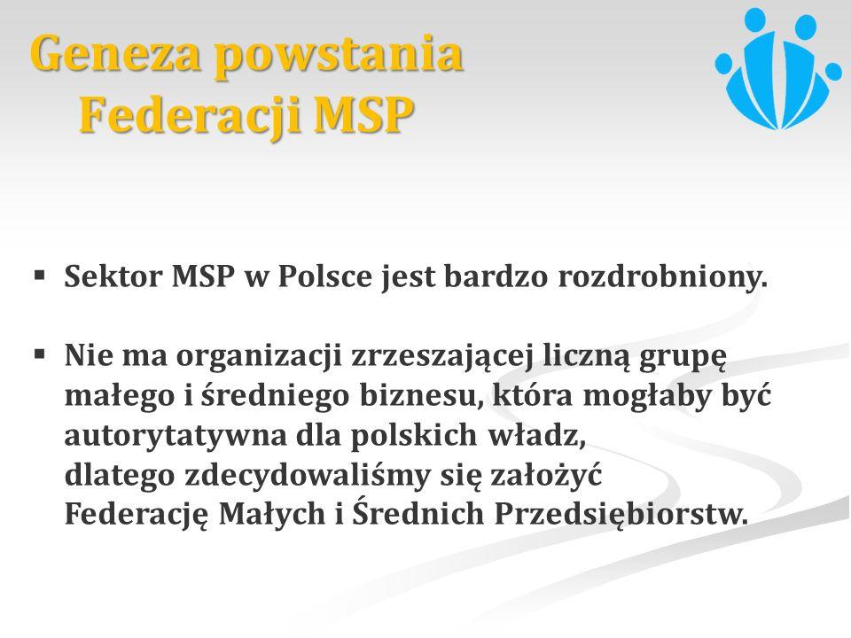 Sektor MSP w Polsce jest bardzo rozdrobniony. Nie ma organizacji zrzeszającej liczną grupę małego i średniego biznesu, która mogłaby być autorytatywna