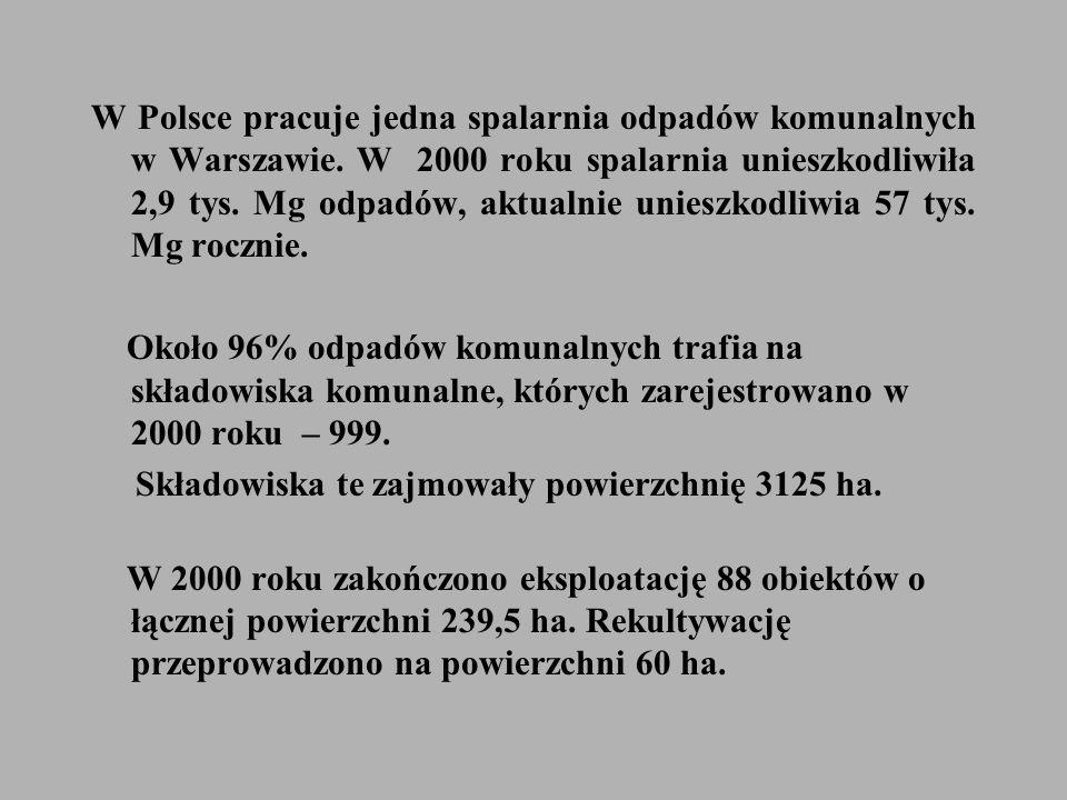 W Polsce pracuje jedna spalarnia odpadów komunalnych w Warszawie.