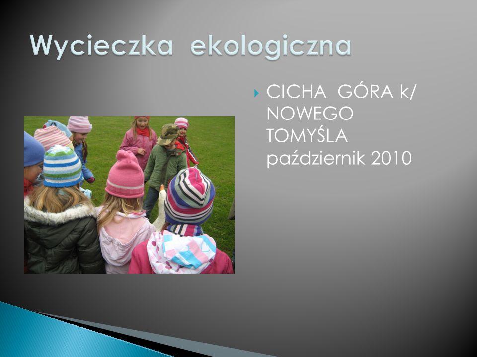 CICHA GÓRA k/ NOWEGO TOMYŚLA październik 2010