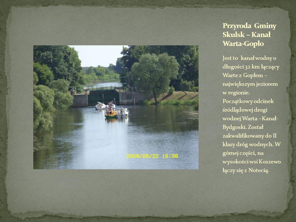 Jest to kanał wodny o długości 32 km łączący Warte z Gopłem – największym jeziorem w regionie. Początkowy odcinek śródlądowej drogi wodnej Warta –Kana