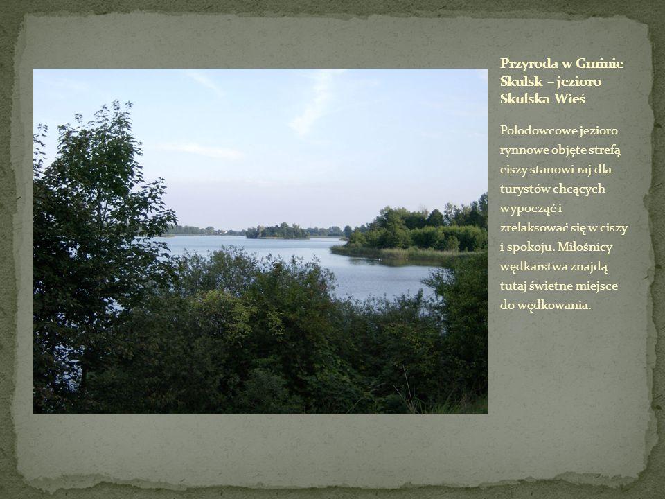 Polodowcowe jezioro rynnowe objęte strefą ciszy stanowi raj dla turystów chcących wypocząć i zrelaksować się w ciszy i spokoju. Miłośnicy wędkarstwa z