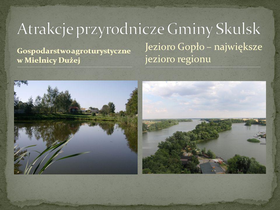 Gospodarstwo agroturystyczne w Mielnicy Dużej Jezioro Gopło – największe jezioro regionu