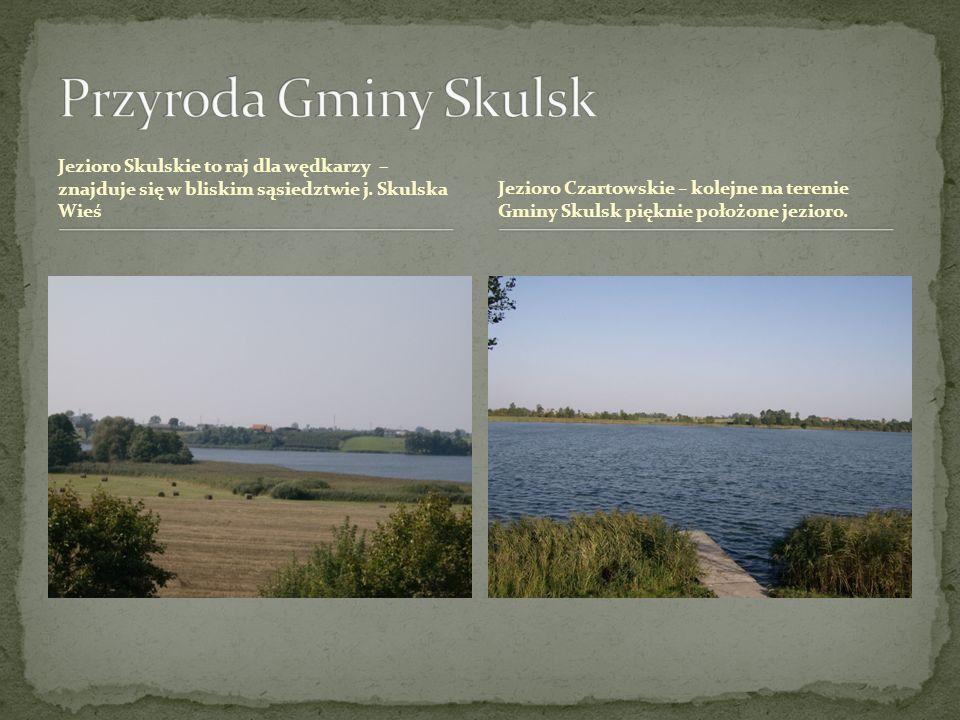 Jezioro Skulskie to raj dla wędkarzy – znajduje się w bliskim sąsiedztwie j. Skulska Wieś Jezioro Czartowskie – kolejne na terenie Gminy Skulsk piękni