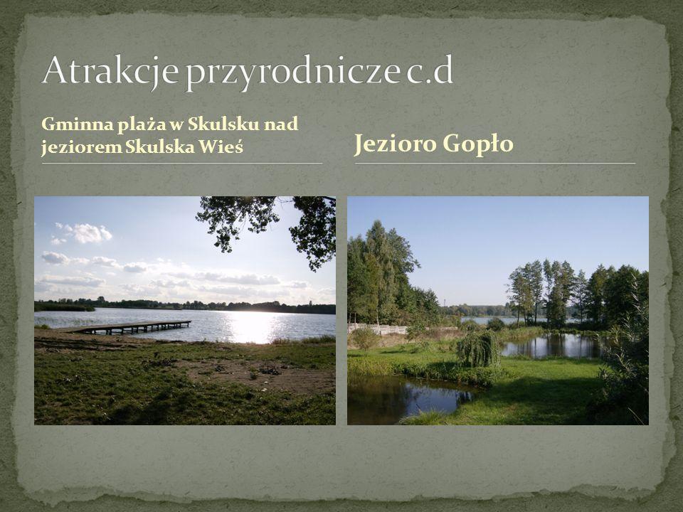 Gminna plaża w Skulsku nad jeziorem Skulska Wieś Jezioro Gopło